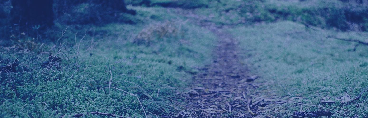 Path-Slider